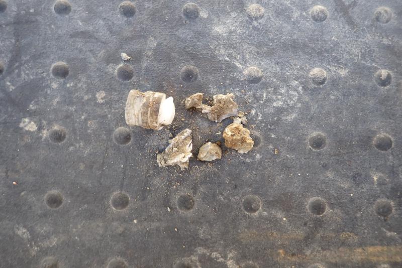 土に当たったスラッグ弾
